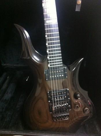 "ESPギターフルオーダーReiraオリジナル""WILDBOAR CTM-550"""