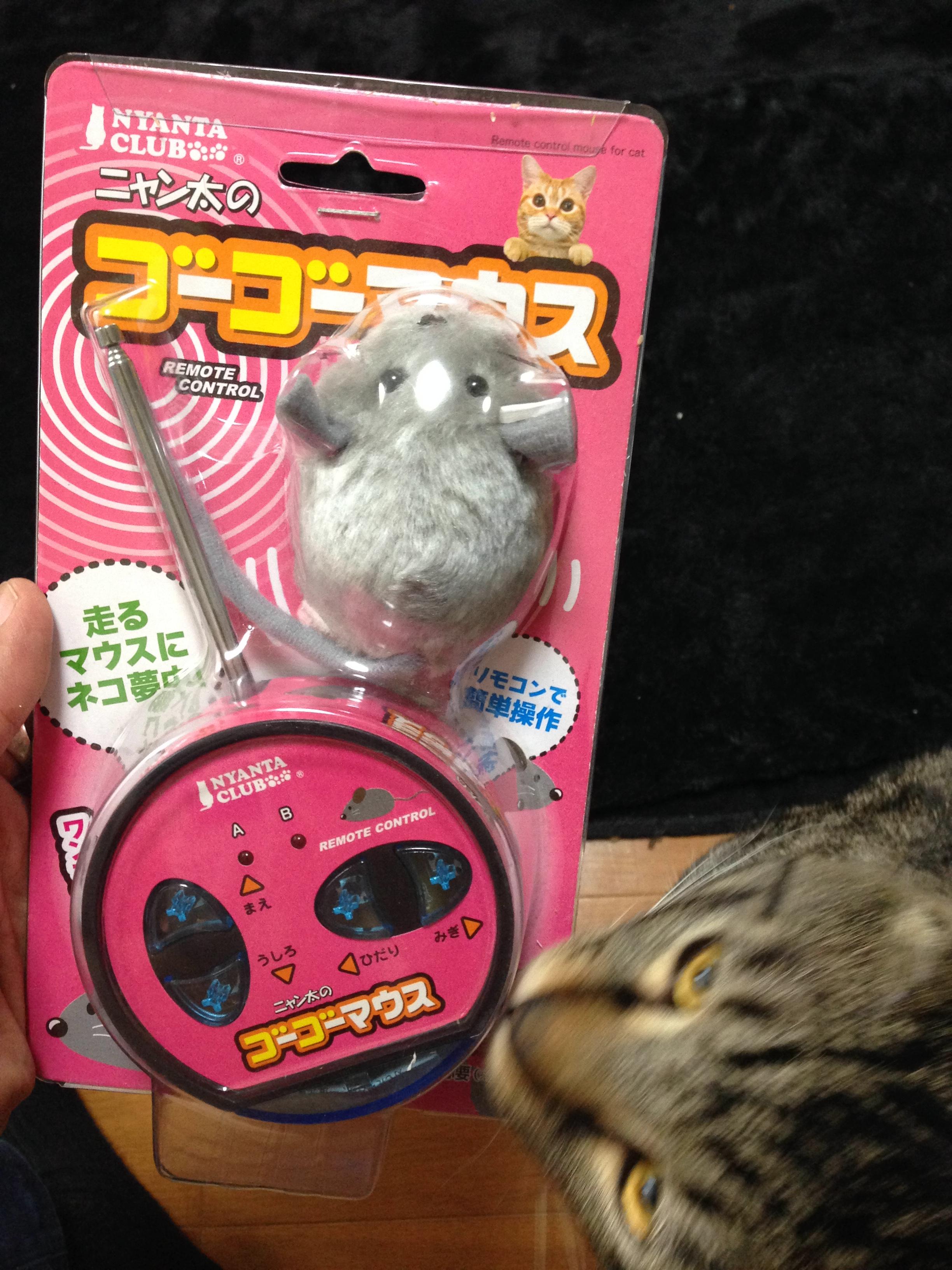 猫の玩具ゴーゴーマウス♪ねこパンチ炸裂動画(笑)